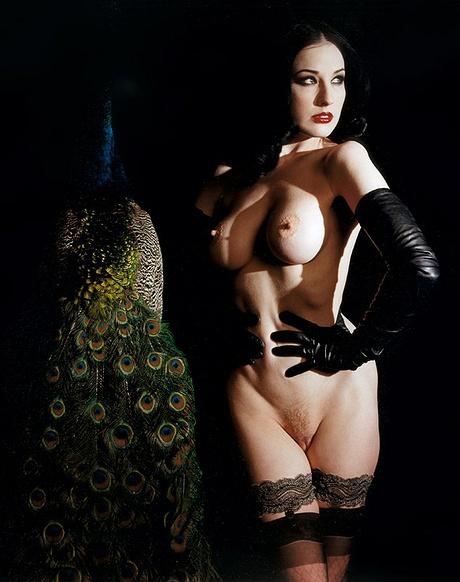 Nacktes Bild von Playboy Girls